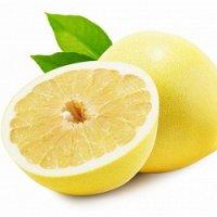 グレープフルーツ精油